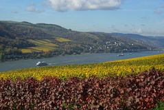 Rhein 03 Royalty Free Stock Photos