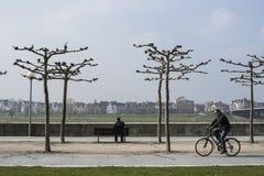 Rhein invallning i DÃ-¼sseldorf Arkivfoto