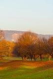 Rheinaue Park Lizenzfreies Stockfoto