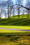 Rheinaue Park Royalty Free Stock Photo