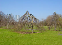 Rheinaue park in Bonn, Germany Stock Photo