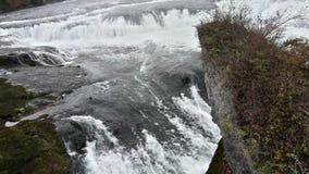 Rheinfall w Szwajcaria Fotografia Royalty Free