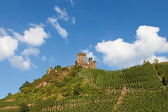 Rheinland-Pfalz, Mosel, Ansicht des Weinbergs und des Schlosses Stockfotografie