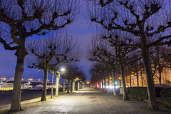 Rheinpromenade in Mainz in Germany. In the evening Royalty Free Stock Photo