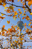 Rheinturm Royalty Free Stock Image