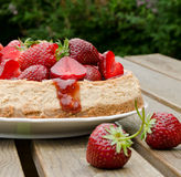 Rheum cheesecake with strawberries. On a wooden table on the background of the dark green bushes Royalty Free Stock Image