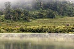 Rhi Lake, Myanmar (Burma) Royalty Free Stock Images