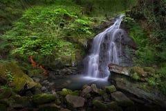 Rhigos Waterfall Royalty Free Stock Photo