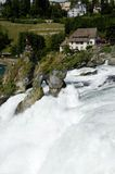 Rhina tombe en Suisse Photos libres de droits