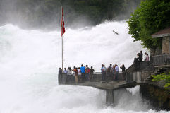 Rhine Falls foto de archivo