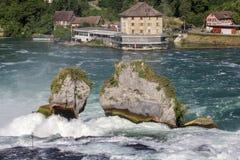 Rhine Falls - Schweiz royaltyfri bild