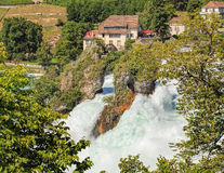 Rhine Falls in summer Royalty Free Stock Photography