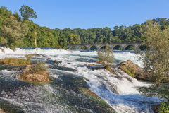 Rhine Falls in summer Stock Image