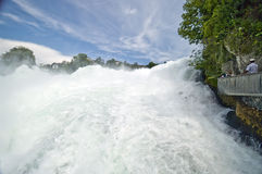 The Rhine Falls in Switzerland Stock Image