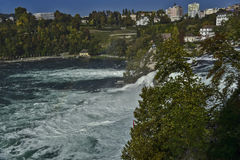 The Rhine Falls. The Rhine waterfall in the Swiss canton of Schaffhausen, near the town of Neuhausen am Rheinfall. The waterfall is considered to be the largest Royalty Free Stock Photography