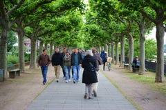 Rhine promenade Mainz Stock Photos