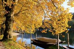 Rhine river at autumn atomsphere Royalty Free Stock Photos