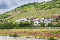 Rhine River Germany Royalty Free Stock Photography