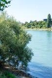 Rhine rzeka w Basel z drzewem i krajobrazem zdjęcie royalty free