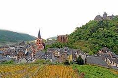 Rhine rzeka w wiośnie fotografia royalty free