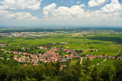 Rhine Valley. In summer in Germany stock photos