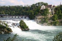 Rhine Waterfall Royalty Free Stock Image