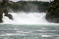 Rhinefall Stockbilder