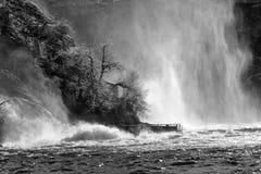 Rhinefall i vintermist royaltyfria foton