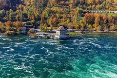 Rhinet River precis nedanför den Rhine Falls vattenfallet Arkivfoto