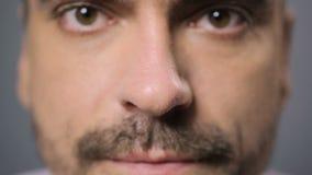 Rhinitis i alergia Zamyka w górę widoku mężczyzna nos, męskie kapiące nos krople zdjęcie wideo