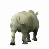 Rhino. A rhinoceros walking away, isolated on white stock image