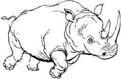 rhino Imagen de archivo libre de regalías