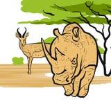 Rhino and Antelope in savannah Stock Photos