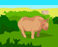 Rhino on background bushes, animals and nature Stock Photography