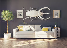The  rhino beetle in the  room Stock Image