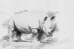 rhino Bosquejo con el lápiz Fotos de archivo