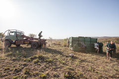 Rhino capture in South Africa. Anti Rhino poaching unit darting rhino to move them to a safer location. With the rise in Rhino killings for their horns Royalty Free Stock Photos