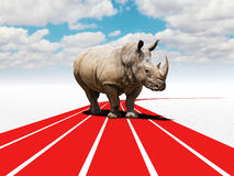 Rhino challenge. Rhino on 3d abstract challenge street Royalty Free Stock Photo