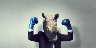 Rhino dressed in business suit . Mixed media royalty free stock images