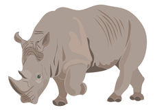 Rhino illustration Stock Photo