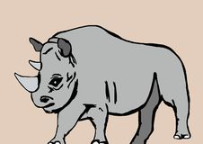 The rhino Stock Images