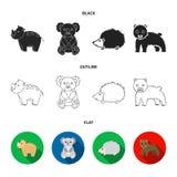Rhino, koala, panther, hedgehog.Animal set collection icons in black,flat,outline style vector symbol stock illustration.  royalty free illustration