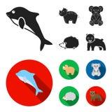 Rhino, koala, panther, hedgehog.Animal set collection icons in black,flat style vector symbol stock illustration web. Rhino, koala, panther, hedgehog.Animal set vector illustration