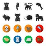 Rhino, koala, panther, hedgehog.Animal set collection icons in black,flet style vector symbol stock illustration web. Rhino, koala, panther, hedgehog.Animal set stock illustration