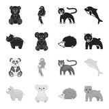 Rhino, koala, panther, hedgehog.Animal set collection icons in black,monochrome style vector symbol stock illustration.  royalty free illustration