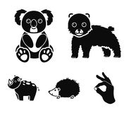 Rhino, koala, panther, hedgehog.Animal set collection icons in black style vector symbol stock illustration web. Rhino, koala, panther, hedgehog.Animal set stock illustration
