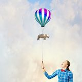 Rhino on lead Royalty Free Stock Photos