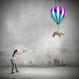 Rhino on lead Royalty Free Stock Images