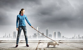 Rhino on lead Stock Images