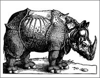 Rhino old engraving Royalty Free Stock Image